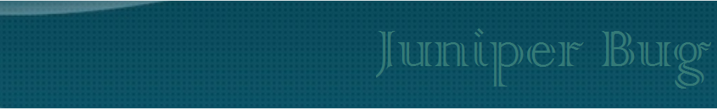 JuniperBug