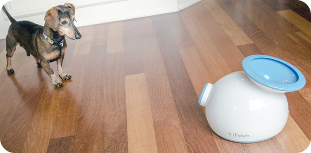 The iFetch launches tennis balls and acts as an interactive playmate for your pet.