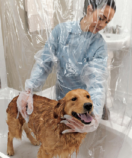 never get splashed again with this pet shower curtain