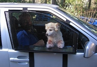 With this pet window guard, your dog won't be able to leap out the window.