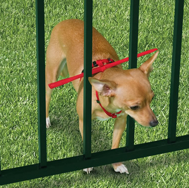 The escape prevention dog harness keeps your pet from slipping through the cracks.