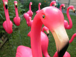 There are more fake flamingos in the world than real flamingos.
