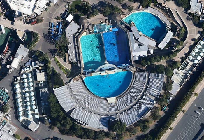 SeaWorld San Diego and its other locations feature a variety of educational programs, including day camps and sleepovers. The company recently stated its case for keeping killer whales.SeaWorld San Diego Map
