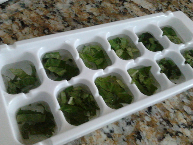 Freeze herbs when they're at their summer best to preserve them for the winter.