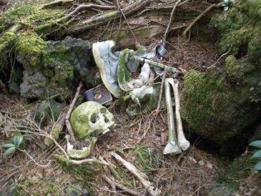 "As well as finding the occasional skull or noose, visitors to the forest will also see many signs saying, ""Life is a precious thing! Please reconsider!"" or ""Think of your family!"""