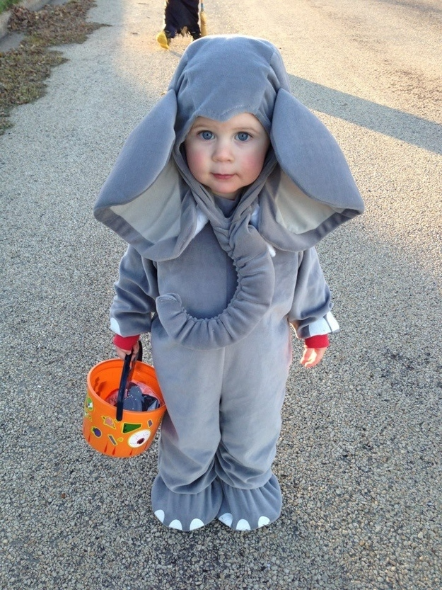Cute 2t Halloween Costumes.26 Halloween Costumes For Toddlers That Are Just Too Cute To Believe
