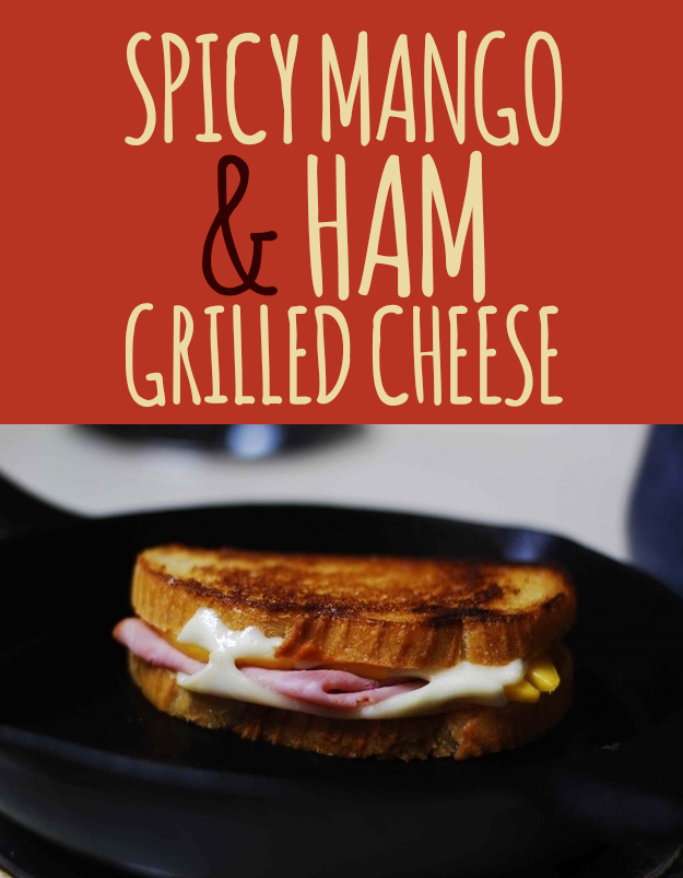 26 Truly Thrilling Grilled Cheese Sandwiches | enhanced-buzz-1609-1381778699-0