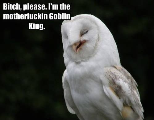 """From the movie """"Labyrinth"""". The Goblin King is willing to do anything for the girl he loves, even reorder time and turn the world upside down. And if all that has no power over you, he'll turn into the shape of an owl and still look after you."""
