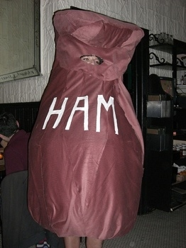 6 Awesome Versions Of Scout S Ham Costume In Quot To Kill A