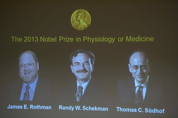Three Biologists Win Nobel Price In Medicine