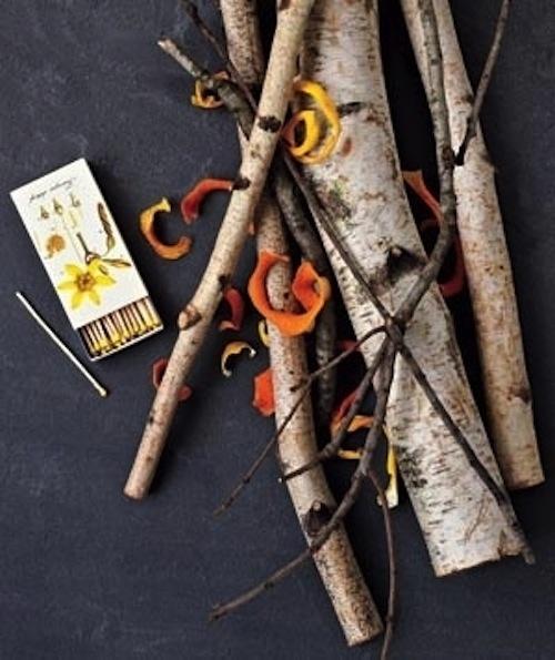 Use dried orange or lemon peels as firestarters.