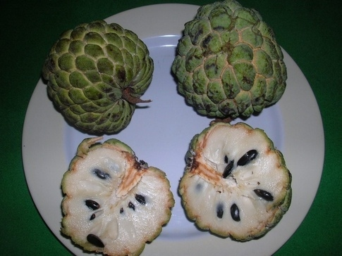 Sweetsop, sometimes known as Custard Apple or Sugar Apple