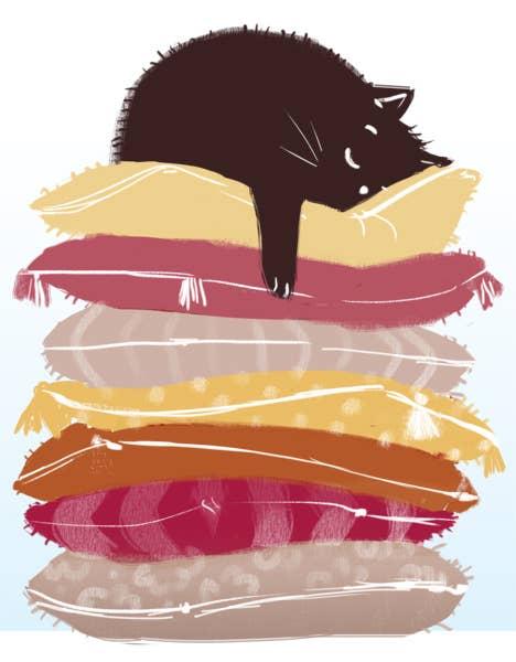 Cat Nap 2