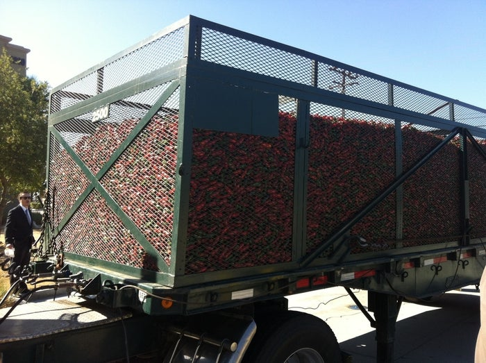 A truck filled with a load of jalapeño chili peppers arrives at the Huy Fong Foods' Irwindale plant.