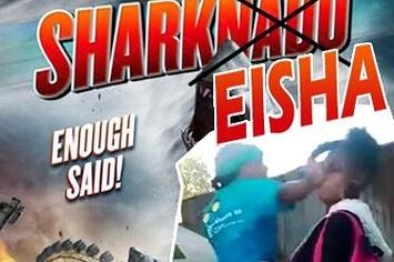 Why #Sharkeisha Is Trending On Twitter