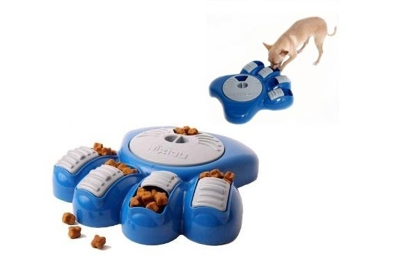 Where to get it: Amazon.comCost: $25Why your pet needs it: This puzzling bowl will encourage your dog to eat more slowly. While we've always been told not to play with our food, there's no reason our pet can't!