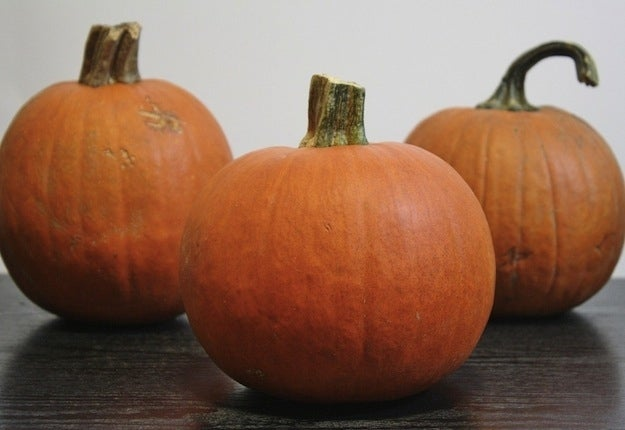 Roasting pumpkins is super simple. You'll need to start with a sugar pumpkin, AKA a pumpkin pie pumpkin. Though pumpkins begin to ripen in October, they're usually available at most grocery stores through the end of winter.