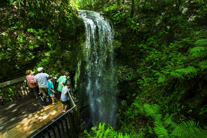 You can find this hidden gem at Falling Waters State Park. No one said Florida was creative with its naming of state parks.