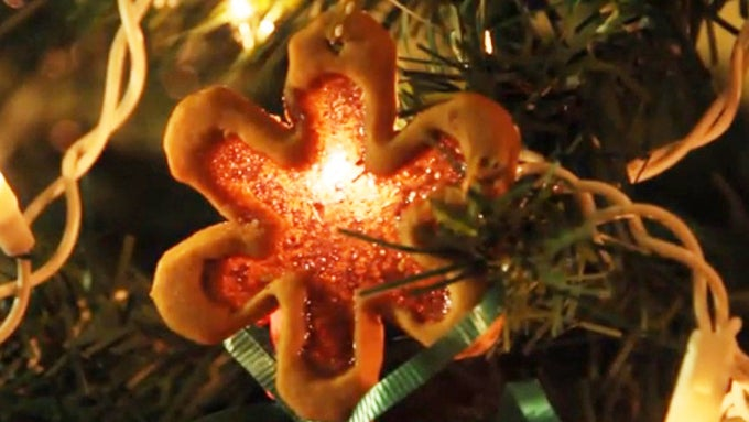 Use Jolly Ranchers to decorate your tree with these beautiful cookies for Jolly Ol' Saint Nick! By PBS Parents' Kitchen Explorers.