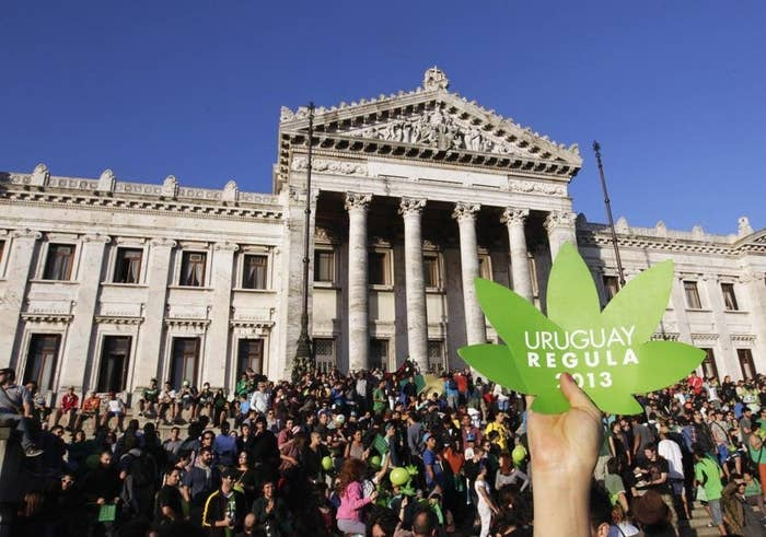 """People participate in the so-called """"Last demonstration with illegal marijuana"""" in front of the Congress building in Montevideo on December 10, 2013."""