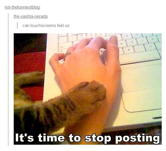 31 Tumblr Users That Are Not Okay