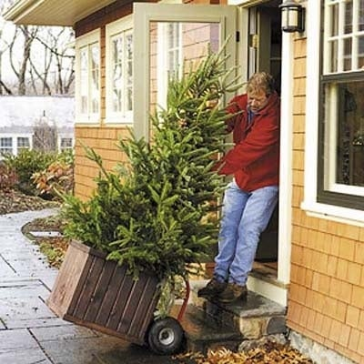 If your sniffling and sneezing coincide with the arrival of your freshly cut Christmas tree, you could be reacting to skyrocketing mold spore counts. If you must have a real tree in your home, prevent allergic reactions for guests and loved ones by hosing your tree down, spraying it with a mold-resistant sealant like M-1 Sure Cote, and allowing it to dry before bringing it indoors.Mold spore counts might be lower with living trees, and lower still with artificial trees. But, keep in mind that some mold can grow on living trees in nature and that dust accumulates while artificial trees are in storage. Also, ask growers about the pollination behavior of your tree: Mountain cedar trees pollinate in late November to early December, so allergy sufferers should steer clear of that variety. Allergy sufferers should consider wearing an allergy relief mask while decorating and keeping an air purifier in the room of the display.RELATED: 20 Super Cool Stocking Stuffers for the DIYer