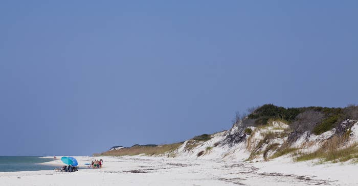 Yes, those are people next to a sand dune at the beach. It's Florida, so everything above sea level is a mountain.