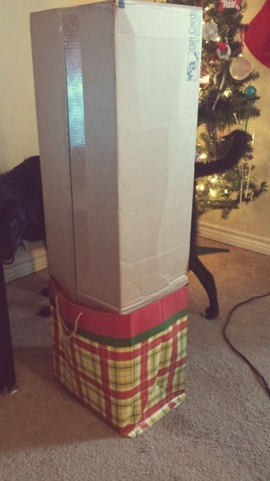They should never be allowed to wrap the Christmas presents.