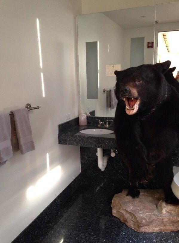 Governor Left Giant Bear In Bathroom For Next Governor