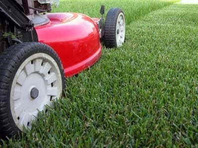 When mowing your yard, make certain that you do not blow grass clippings into the street. If grass does end up on the street or sidewalk, use a broom or lead blower to get clippings back on the lawn. From our streets to our streams—grass clippings flow down into waterways and pollute nearby lakes and streams. Clippings contribute nutrients such as nitrogen and phosphorus, which can cause unwanted growth of algae and aquatic weeds in the waterways.