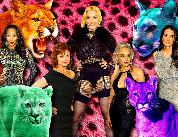 Meeting cougars on facebook