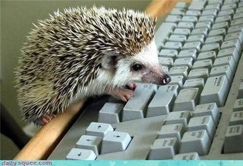 """""""Excel has a bug again? Great, I'll just re-do this spreadsheet 12 more times."""""""
