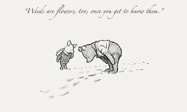 "Winnie The Pooh Quotes About Life Custom Winnie The Pooh"" Quotes To Live By"