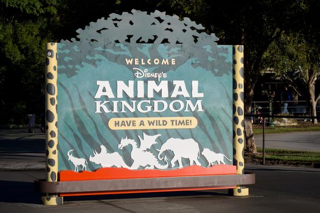 Dá para ver um Dragão nas placas do Reino Animal, e uma cabeça de dragão pairando acima dos portões de entrada. Eles estão lá para representar uma área desativada chamada Reino Bestial, que seria dedicada a animais míticos.