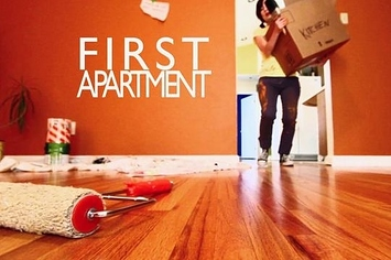 Apartment Best My First Apartment Ideas On Pinterest