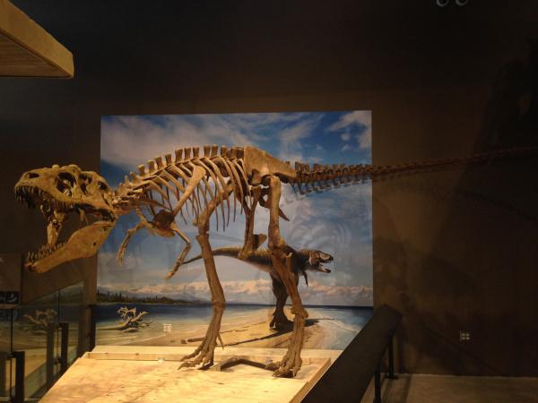T. Rex's Great Uncle