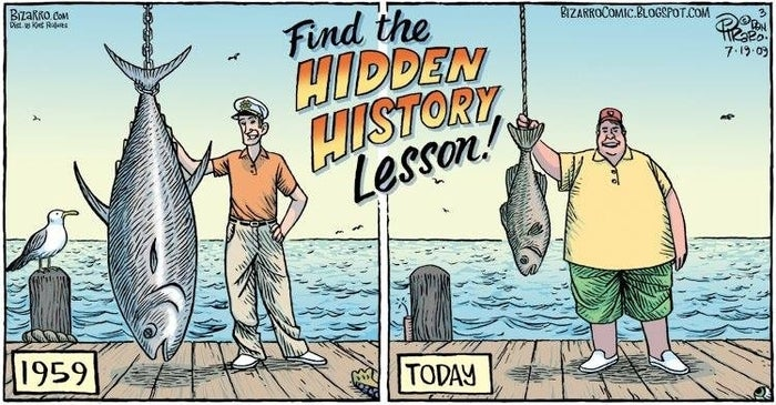 Some experts estimate that 90% of all large predatory fish have been lost from the sea over the past 100 years. (Source)