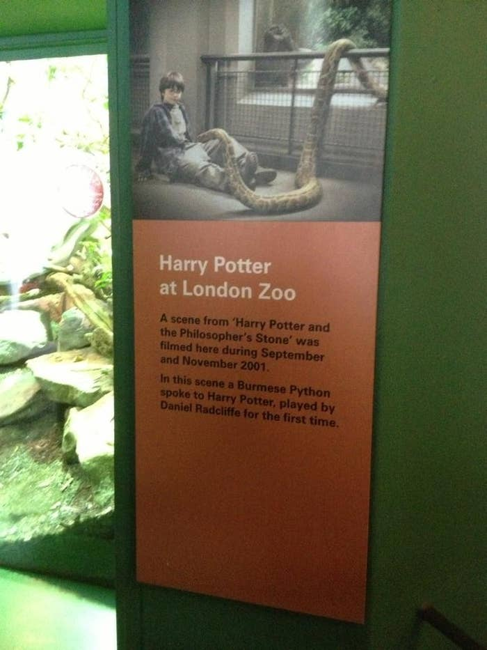 Plaque inside the Reptile House to commemorate the wonderful scene filmed here, where Harry set a python on his cousin Dudley.