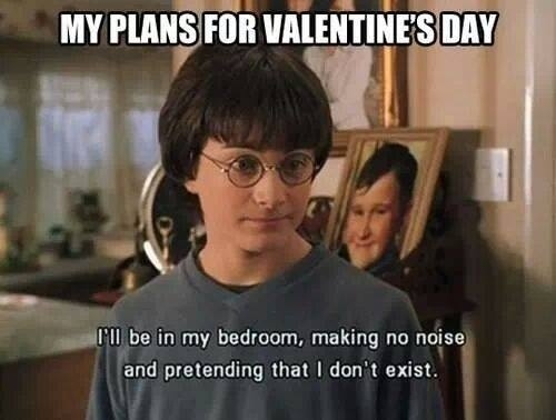 LOL What Us HP Fans Will Really Be Up To On V Day: