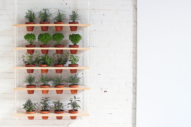 a diy hanging herb garden that brings the outdoors in - Hanging Herb Garden