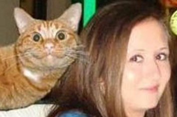 This Cat Photobombing a Live News Report is Extremely ...