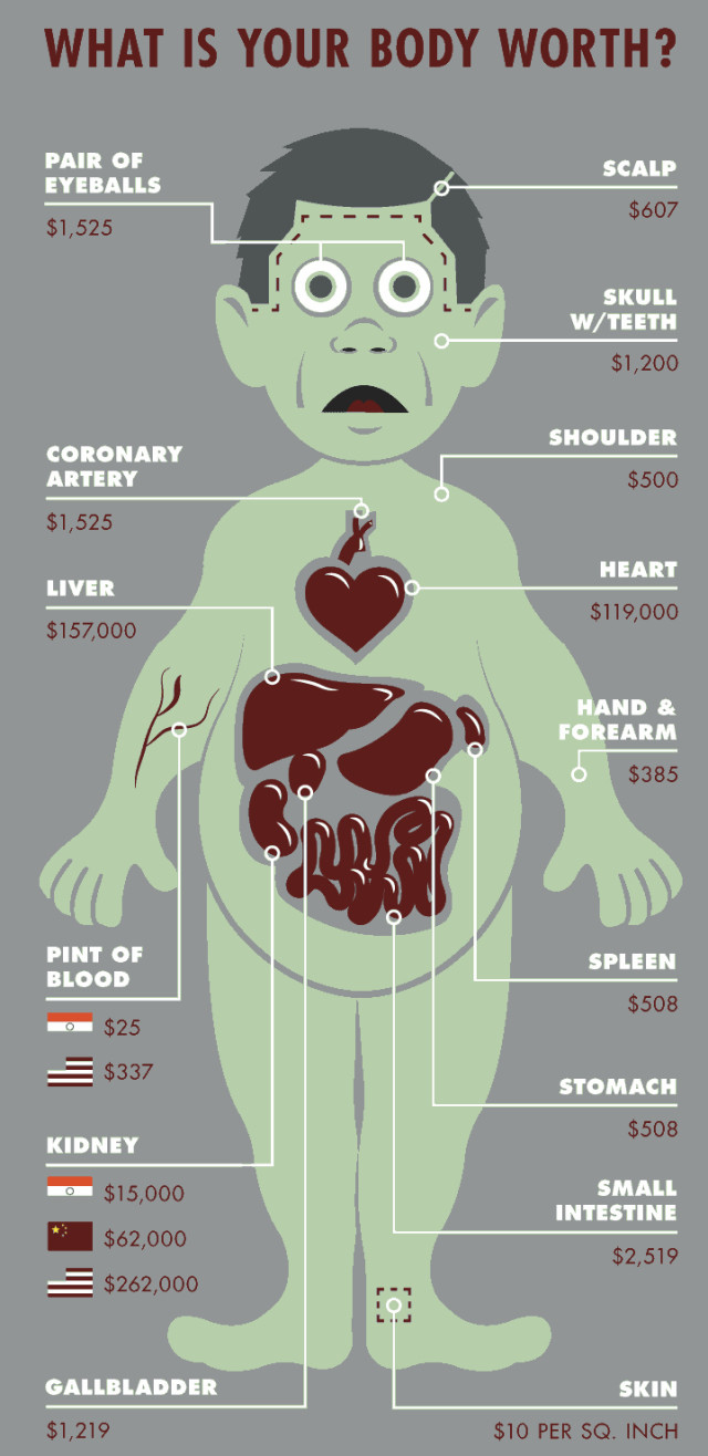This Is How Much Your Body Parts Are Actually Worth