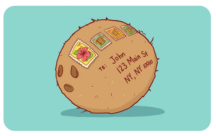 """The USPS views a coconut as a self-contained unit, allowing it to be mailed without any additional packaging required. This is SO much better than a """"Wish You Were Here"""" postcard from Hawaii."""