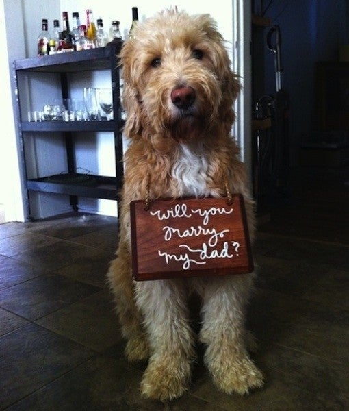 Who could say no to that hairy mug?