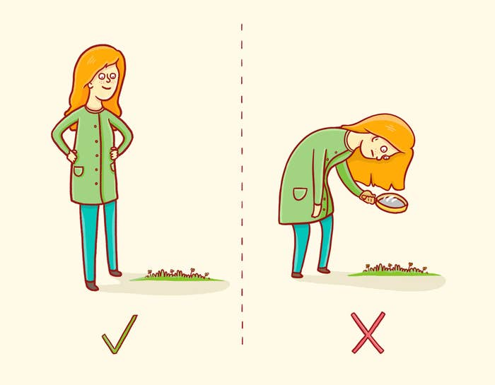 Find a large patch and look around from standing height. Don't get on your hands and knees with a magnifying glass! Brush over the clovers lightly with your feet to look for patterns, trying to expose any mutations.
