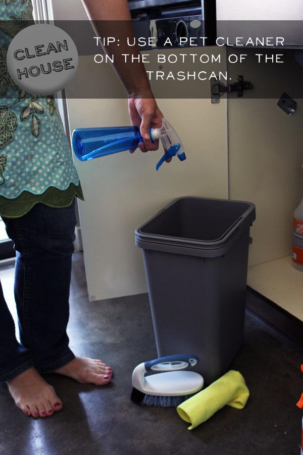 Se você tiver mais ou menos meia hora: faça uma limpeza nas suas latas de lixo.