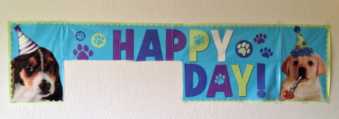 "Removing the ""Birthday"" doesn't hide anything. Everybody knows these are happy birthday party puppy decorations, not valid wall decor. Cats will especially be judging you for this."