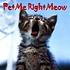 PetMeRightMeow