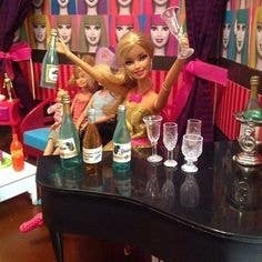 A more realistic person actually. Their Barbie is a self-centered, swearing, bitter, sometimes violent alcoholic with a love of the color pink.