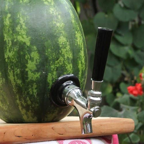 Hollow out a watermelon, fill it with vodka, have fun.
